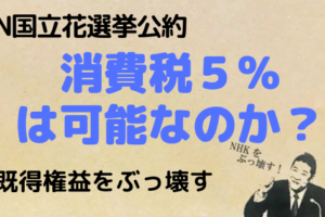NHKから国民を守る党,N国,立花孝志,選挙,政治,既得権益,消費税,選挙,消費税5%