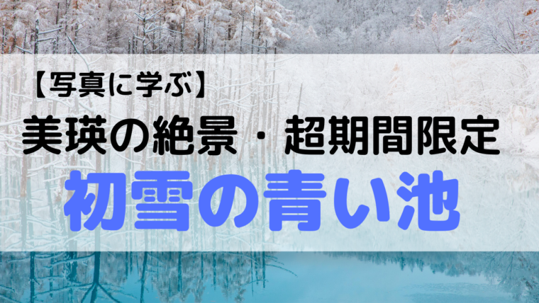 青い池,美瑛,学び,写真